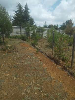 Nanyuki Town on sale 1 acre with spectacular views of Mt.Kenya
