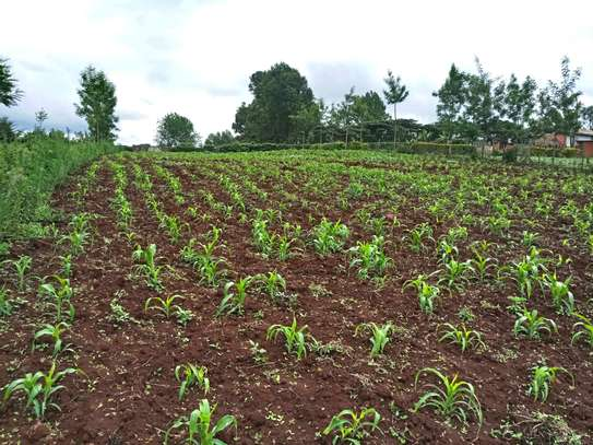 1/8,  1/4 and full acres available for sale in Upper Matasia  (Kahara), area, Ngong Hills. image 5