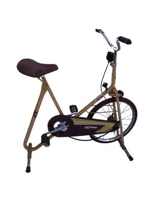DP Pacer Deluxe vintage exercise bike. image 1