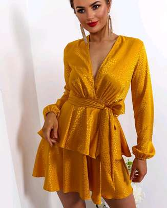 Mini Dress image 1