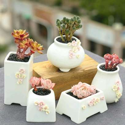 5 in 1 pretty flower vases image 1