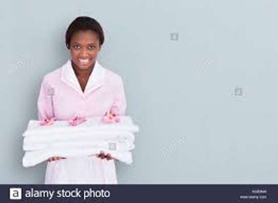 Trained, Professional Domestic Workers. Call Us Today. image 5