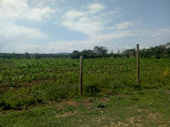 1acre land for sale in Naivasha image 6