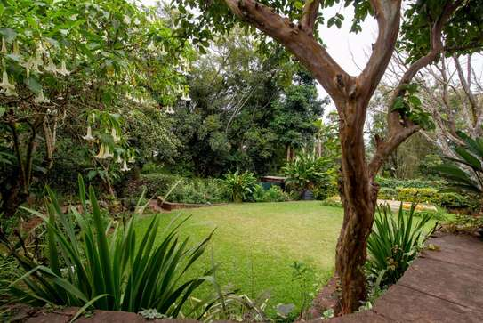 4 bedroom house for rent in Lower Kabete image 20
