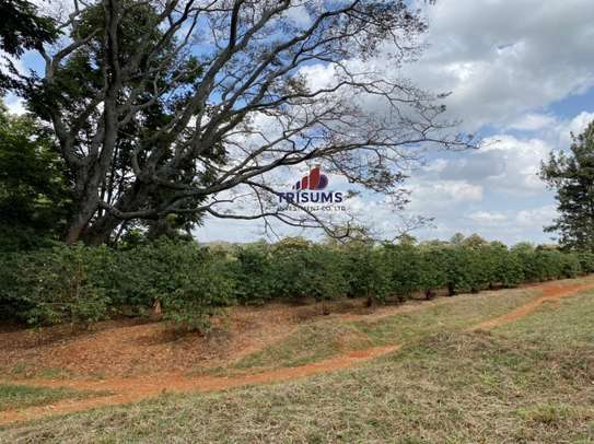 0.25 ac land for sale in Ruiru image 11