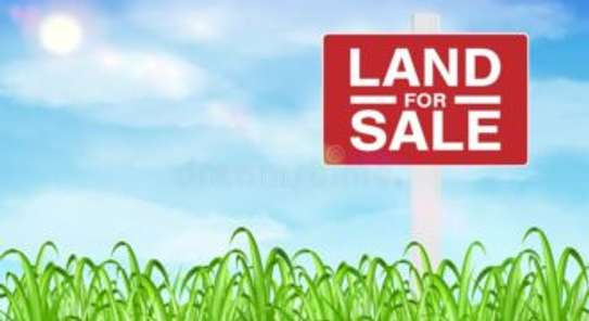 prime land for sale in mumwe drive, Runda