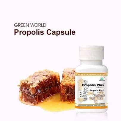 GREEN WORLD PROPOLIS PLUS CAPSULE (500mgx60caps) image 1