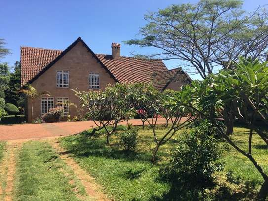 Furnished 4 bedroom house for rent in Runda image 13