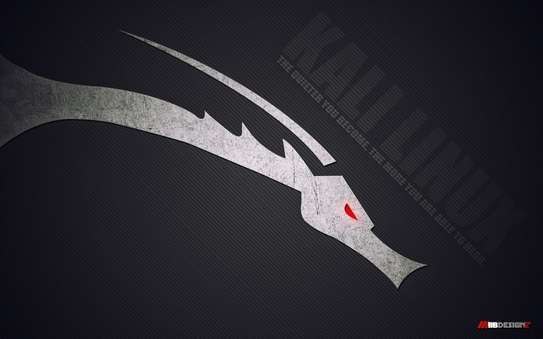 KALI LINUX image 3