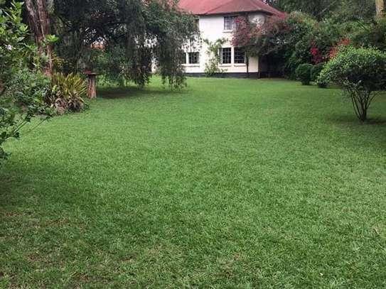 Karen - Bungalow, House, Residential Land, Land image 13