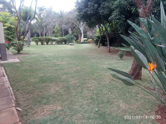 Spacious 4 bedroom home to to let@ Garden estate image 12