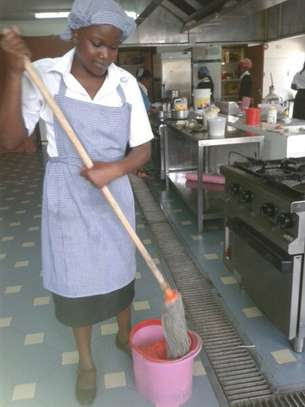Bestcare Cleaning Services.Trained Nannies/Gardening/Painting Service image 4