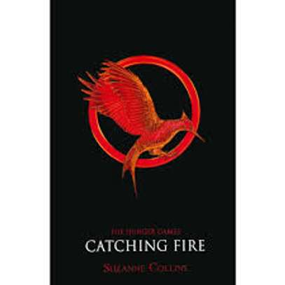 Catching Fire image 1