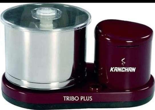 Kanchan Tribo Plus 2-Litre Table Top Wet Grinder image 1