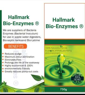 BACTERIA ENZYMES FOR BIODIGESTER/ BIOSEPTIC IN KENYA