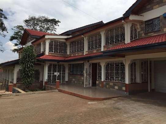 5 bedroom apartment for rent in Nyari image 15
