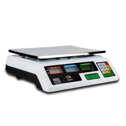 Digital Rechargable Price Counting Weighting Scale (30kg) image 1