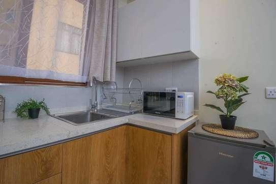 Stunningly Luxurious 1bedroom Fully Furnished In Kileleshwa image 3