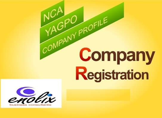 COMPANY/NCA/CR12/AGPO/CHANGES IN SHARES/AUDITED ACCOUNTS