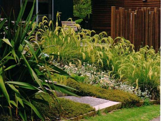 Best Gardening & Lawn Mowing Services|Contact Us Today. image 12