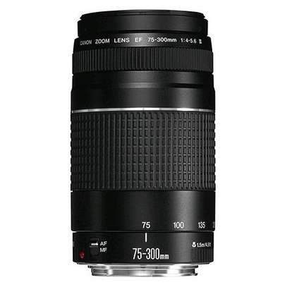 Canon EF 75-300mm f/4.0-5.6 III Telephoto Zoom Lens