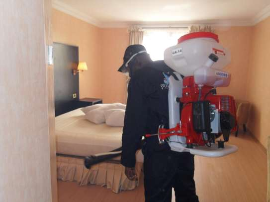 Best Pest Control (Bedbugs, Insects, Rodents, Termites) Professionals Nairobi image 10