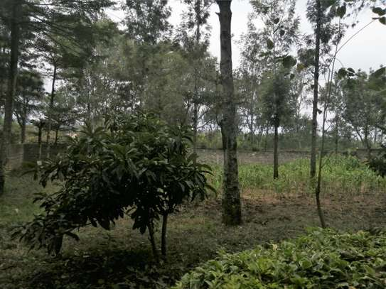 Four bedrooms bungalow to let in Ololua Ngong image 12