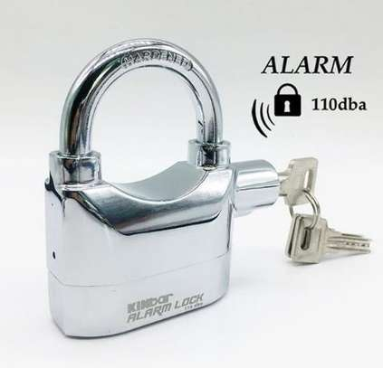 Alarm padlock with siren