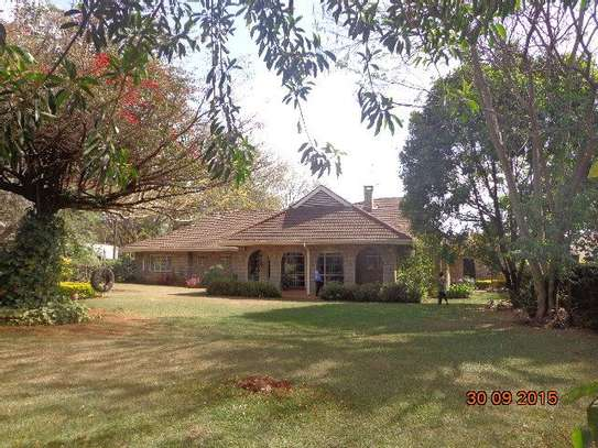 Lavington - Bungalow, House image 1