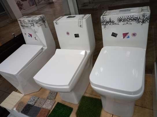 Executive toilets image 1