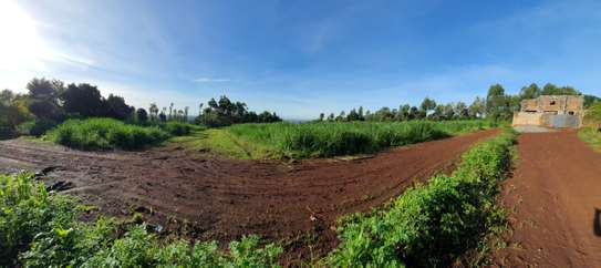 50by100 Plots Kanunga Kiambu.