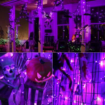 Purple Lights, 10 meters image 2