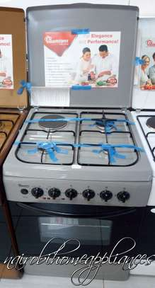 Ramtons Silver Cooker (RF 300 SERIES)