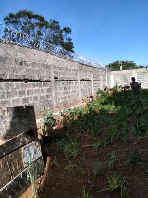razor wire in kenya image 2