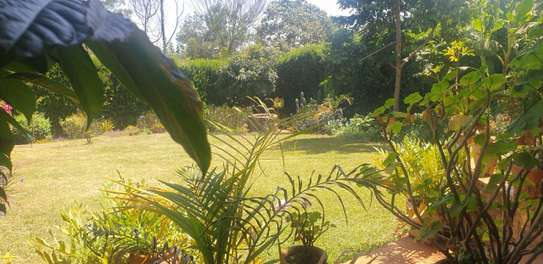 Furnished 4 bedroom house for rent in Runda image 16