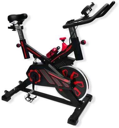 Spinning Bike S100 image 1