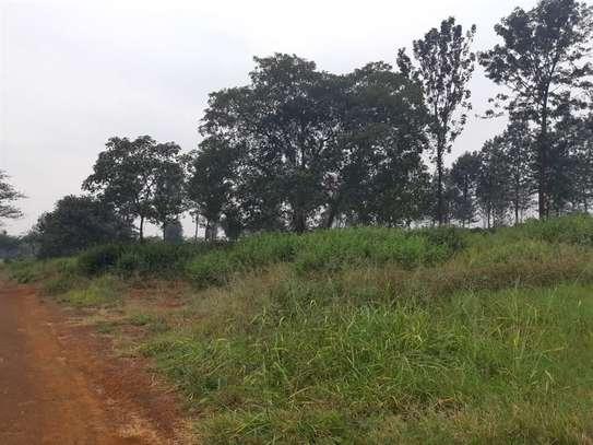 Ruiru - Land image 9