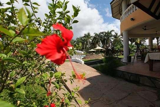 Furnished 10 bedroom apartment for sale in Karen image 10