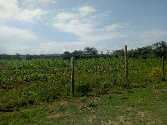1acre land for sale in Naivasha image 5