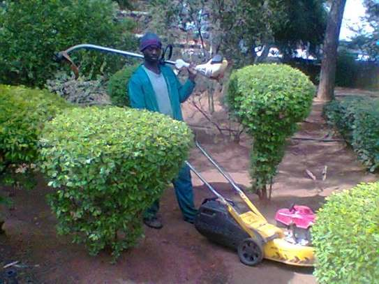 Best Landscaping & Swimming Pool Professionals in Nairobi & Mombasa.Free Quote. image 6