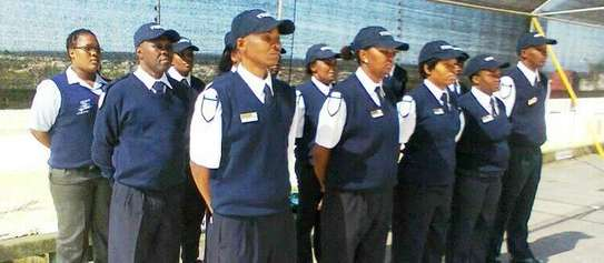 Security Guards image 1