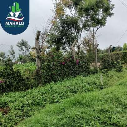 0.5 ac land for sale in Limuru Area image 14