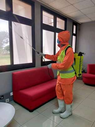 ELLA BEDBUG & COCKROACHES CONTROL & FUMIGATION SERVICES SERVICES IN GITHUNGURI image 1