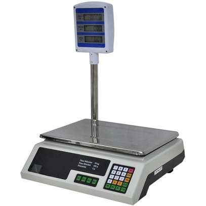30kg Electronic Scales With Pole image 1
