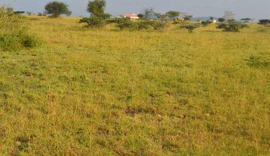 nyeri 20 acres land near nairutia town touching ngobit river image 1
