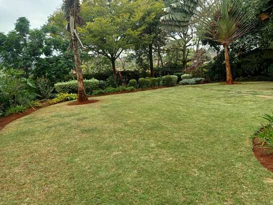 Furnished 4 bedroom house for rent in Gigiri image 5