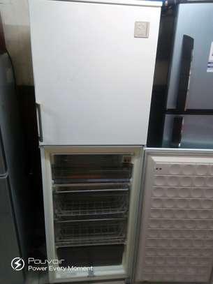 Tall Refrigerator image 2