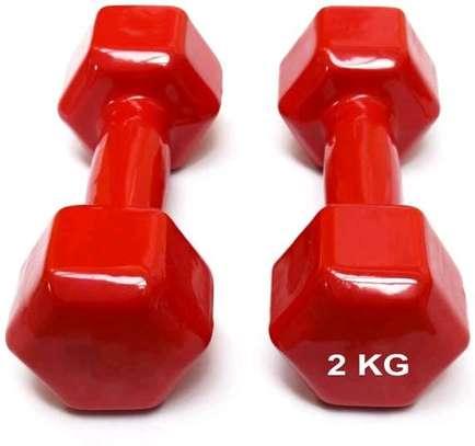 2kgs vinyl dumbbells image 1