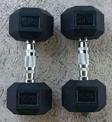 10 kgs hex Dumbbells image 1