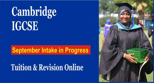 Best IGCSE online tuition & Revision image 1